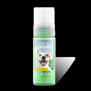 קצף לניקוי ורענון הנשימה לכלב