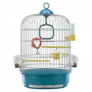כלוב לציפורים-רגינה