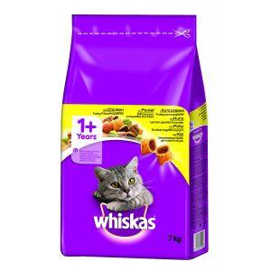 ויסקס מזון יבש לחתול בוגר עוף - Whiskas