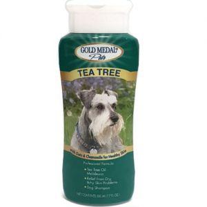 שמפו גולד מדל עץ התה להרגעה