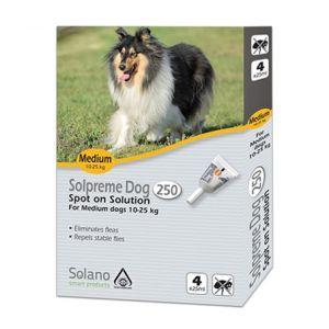 סולפרם לכלבים בינוניים