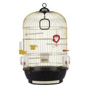 כלוב לציפורים-דיוה