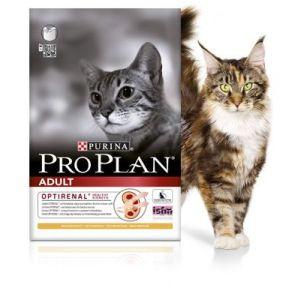 פרופלאן חתול בוגר עוף ואורז
