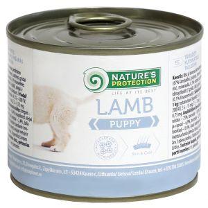 NP שימור לגורי כלבים כבש