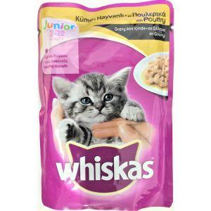 ויסקס פאוץ' עוף לגורים - Whiskas