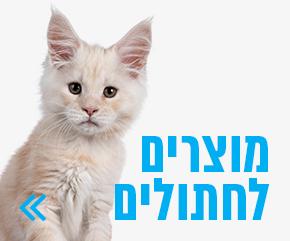 מוצרים לחתולים