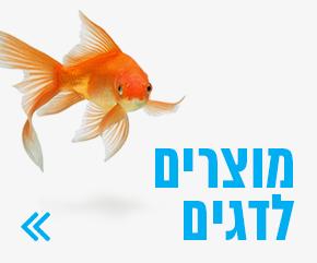 מוצרים לדגים